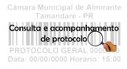 protocolo 2.png